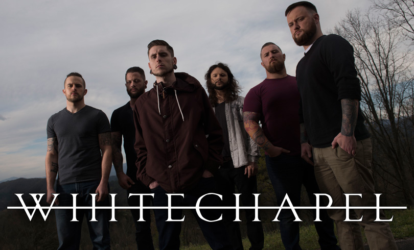 WHITECHAPEL | Summer Breeze